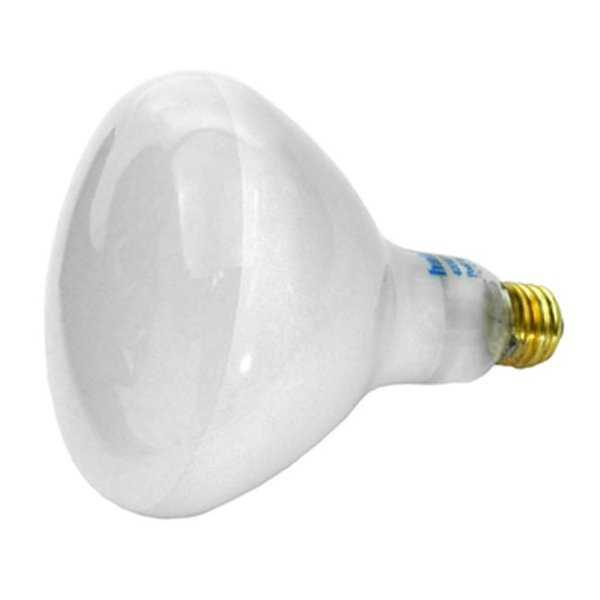 Baystate APC120400M 400W 120V Pool Base Bulb - Medium